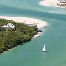 palm-island2
